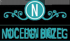 Noclegi Brzeg